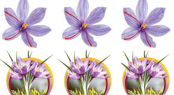 فروش شاخه گل مصنوعی زعفران